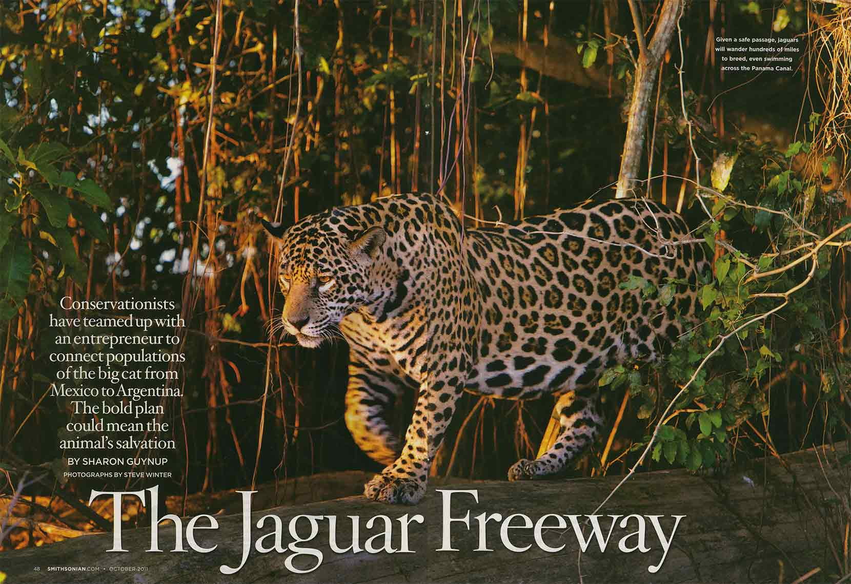Smithsonian_Jag_Tearsheet_Web